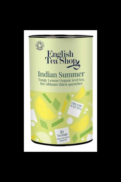 -50% akciós ár ETS 10 ICE TEA Indián nyár – jeges bio tea